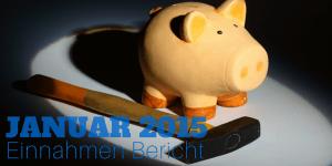 Einnahmen Bericht Januar 2015