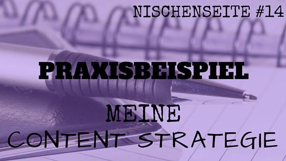 NISCHENSEITE #14 Meine Content Strategie